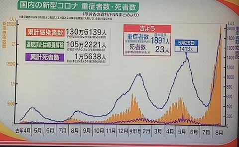 国内感染者推移0822
