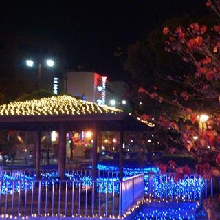 岡山 西川イルミ2016 00