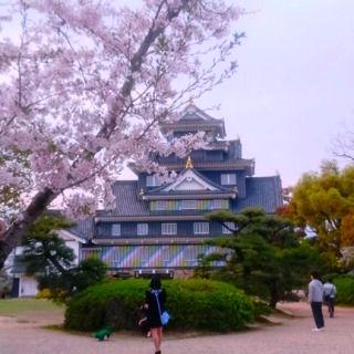 岡山 MT 岡山城とさくら DSC_0665
