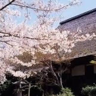 倉敷・円通寺