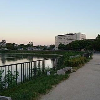 石山公園DSC_0372
