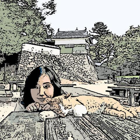 猫と媚中松山城