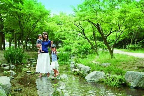 こどもと小川と緑