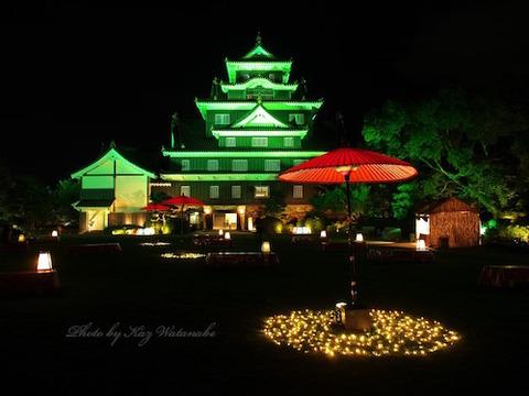 春 岡山城 夜