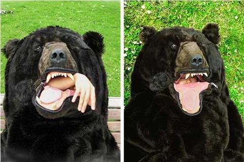 bear-sleeping-bag-2