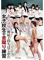 キン○マに興味を持ちはじめた女子校生の金蹴り練習