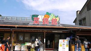 saiteki1