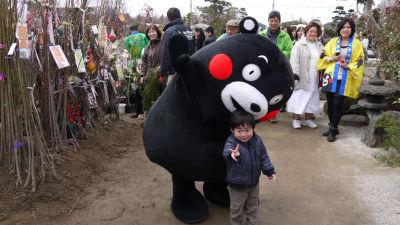 uekikumamon2
