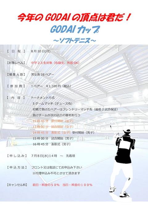 ソフト試合イベント-POP外部OK-1