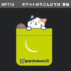 NPT14_3
