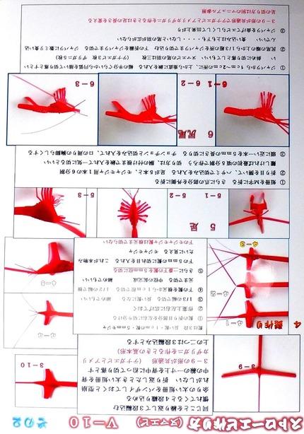 ストローエビ ヌマエビ マニュアル V−10