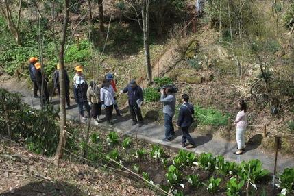 180404 山野草のエキ保存ボランティア (7)