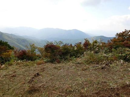 2017年 弟見山カタクリの笹刈り (7)