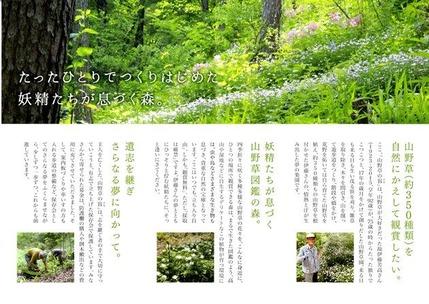 山野草のエキ パンフレット (2)-1