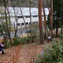 200205 山野草のエキ (12)