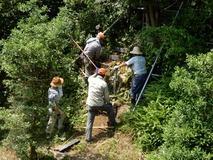 180718 山野草のエキ 作業 危険な階段整備  (2)