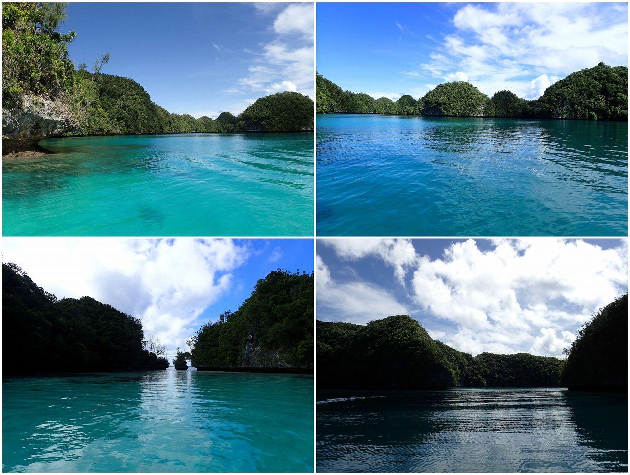 パラオ : 海好きの海好きによる...