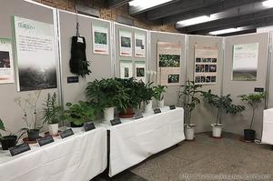 1708A琉球の植物B