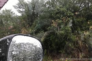 1702A雨