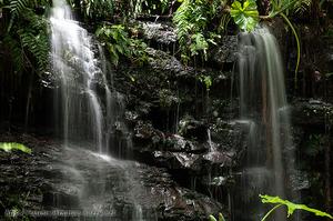 202107A滝B