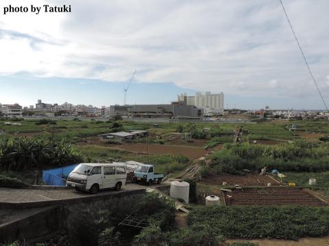 宜野湾 大山 田ーイモ畑
