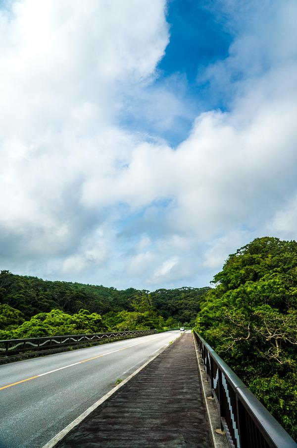 mt_bridge2_gushikumui_140710