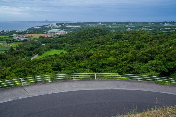 forest_iejima_gushikumui150623