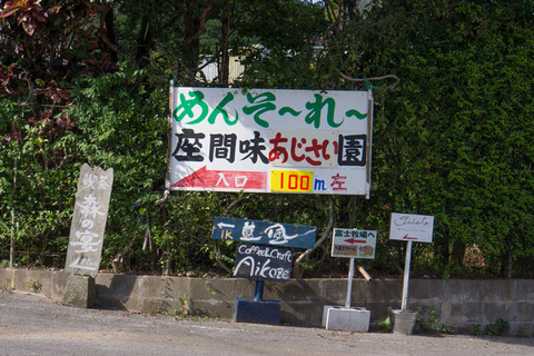 zamamiajisaien_sign