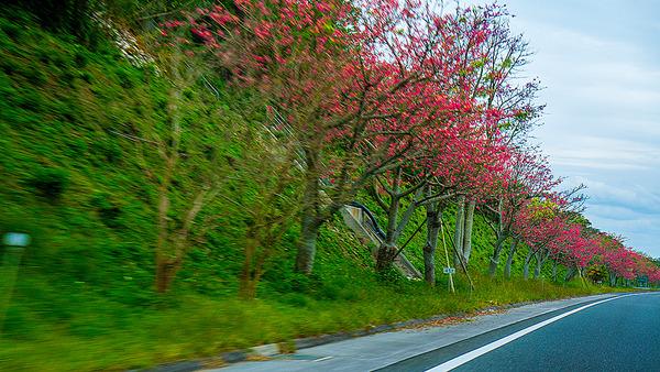 tokkurikiwata_highway_gushikumui131215