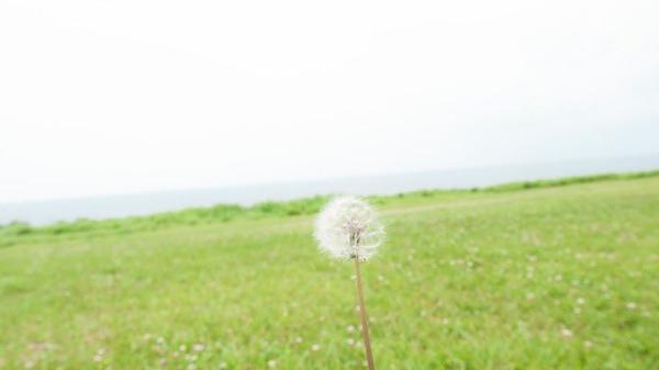 沖縄物件での奇跡