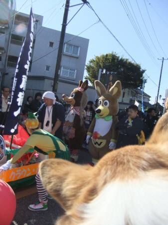 2010.11.03-04