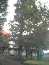 e5c769a9.jpg