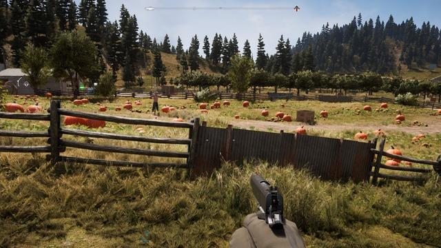 Far Cry 52018-4-15-15-21-53