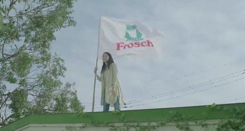 Frosch CM 宮崎あおい フロッシュ ドイツ 洗剤