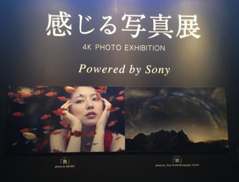 感じる写真展 4K テレビ ソニー SONY 長澤まさみ IQUEEN ミナコレ