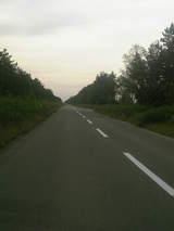 八郎潟の道