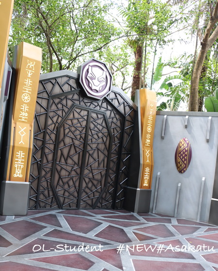 Heroic Encounter with Black Panther at Adventureland