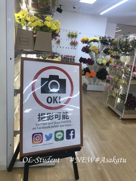 DAISOアルカキット錦糸町店 写真家