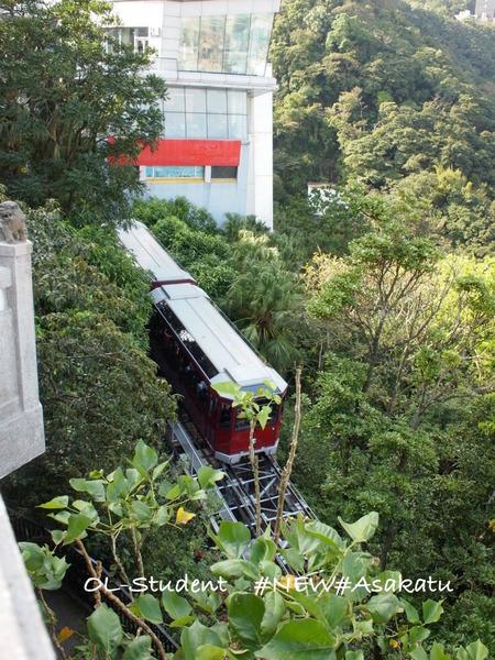 香港 ビクトリアピークとラム