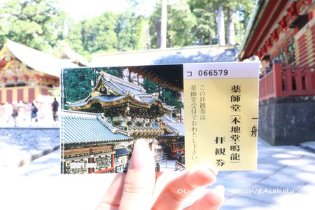 nikko toshogu ticket