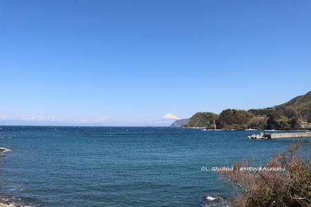 伊豆から富士山