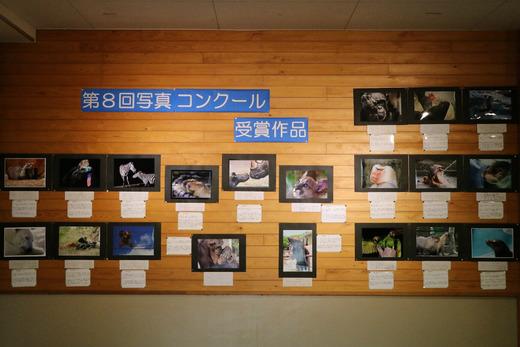 とべ動物園写真コンクール作品展