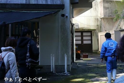 愛媛県立とべ動物園動物サポータ制度