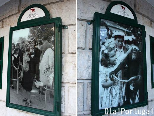 ポルトガル・リスボン動物園