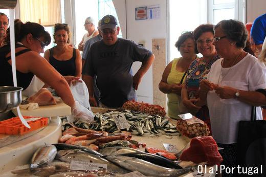 ポルトガル旅行記:ラゴスの魚市場に行って来た