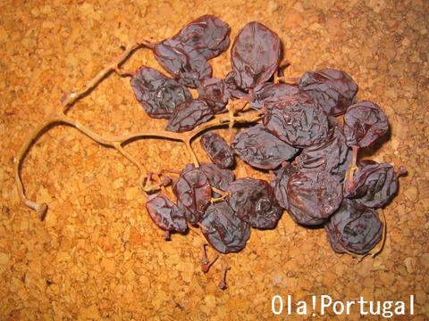 ポルトガルの年越しで干しブドウを食べる