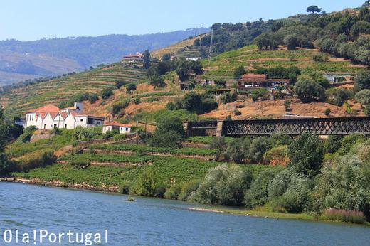 ポルトガル旅行記&ブログ:Ola! Portugal