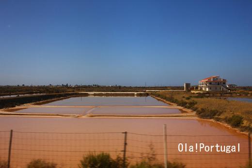 ポルトガルの天然塩、塩の花フロール・デ・サル