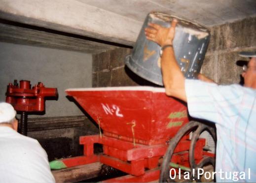 ポルトガルのワイン:Vinho ヴィーニョ