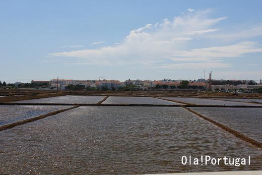 ポルトガル・アルガルヴェ地方の塩田風景
